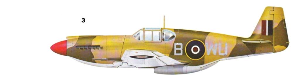 NORTH AMERICAN P-51 MUSTANG P-51-310
