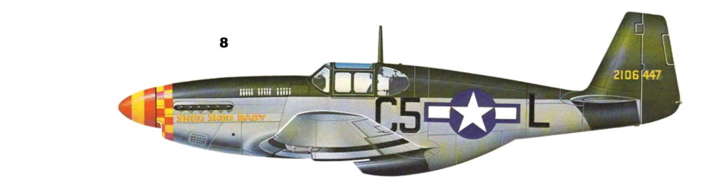 NORTH AMERICAN P-51 MUSTANG P-51-810