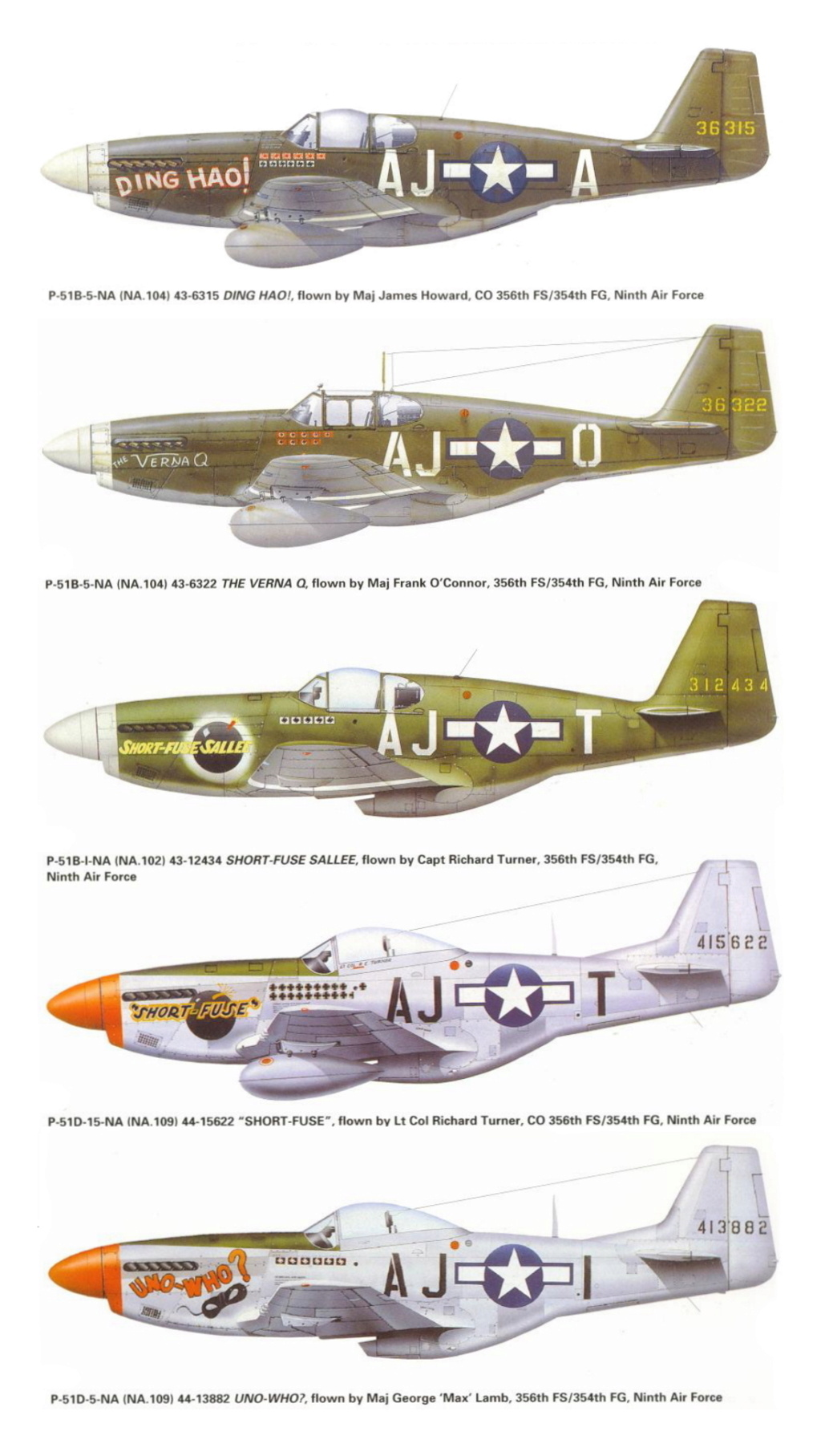 NORTH AMERICAN P-51 MUSTANG P-51-a10