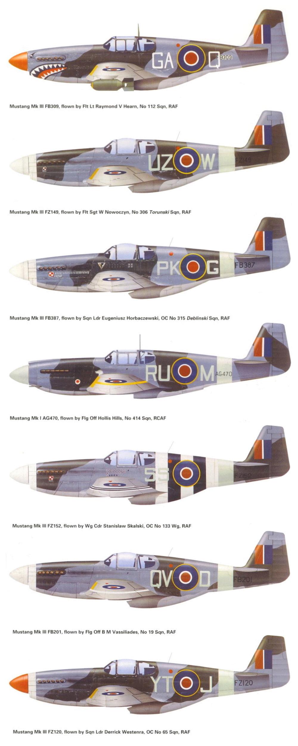 NORTH AMERICAN P-51 MUSTANG P-51-a11