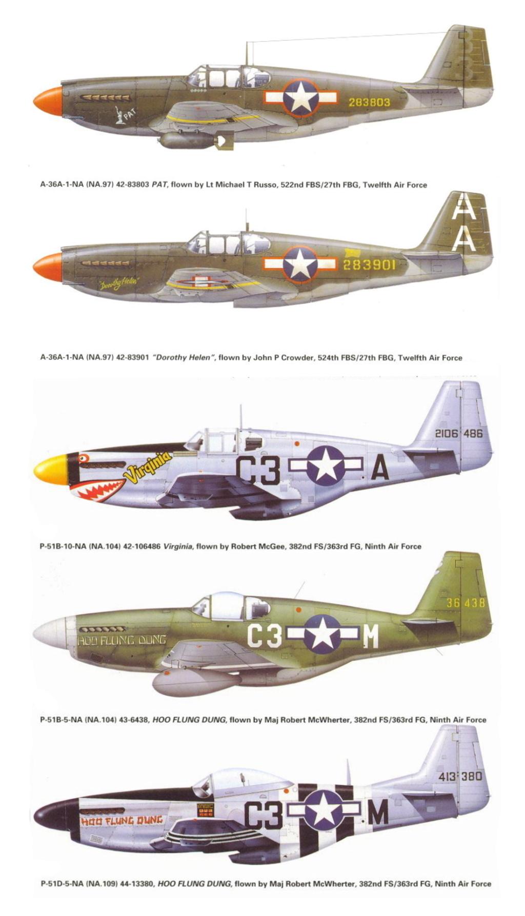 NORTH AMERICAN P-51 MUSTANG P-51-c10