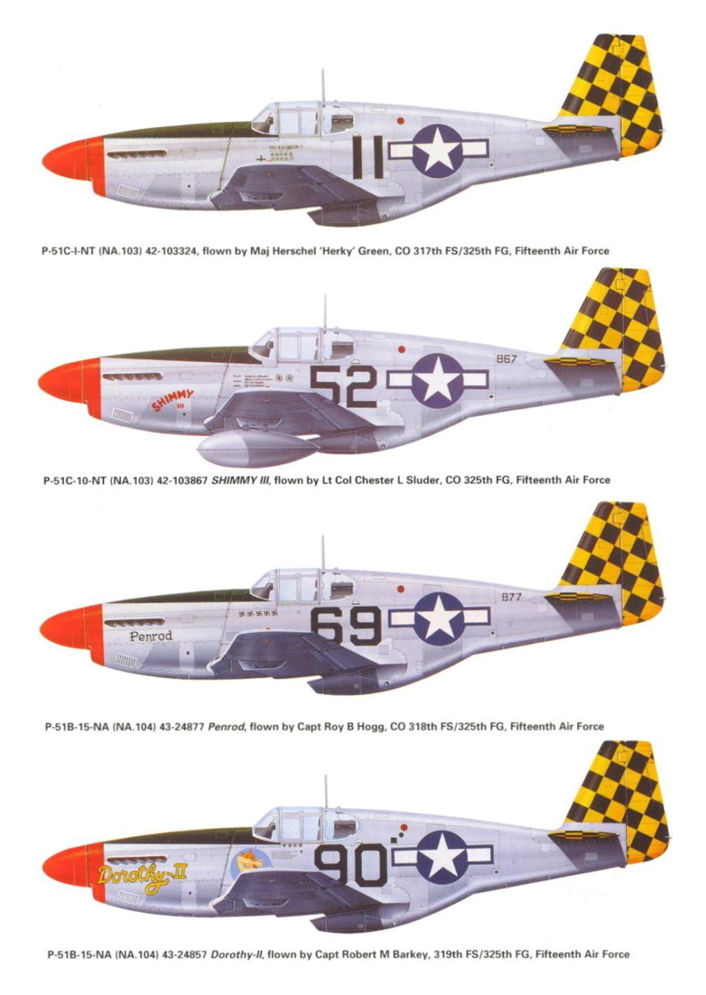 NORTH AMERICAN P-51 MUSTANG P-51-c11