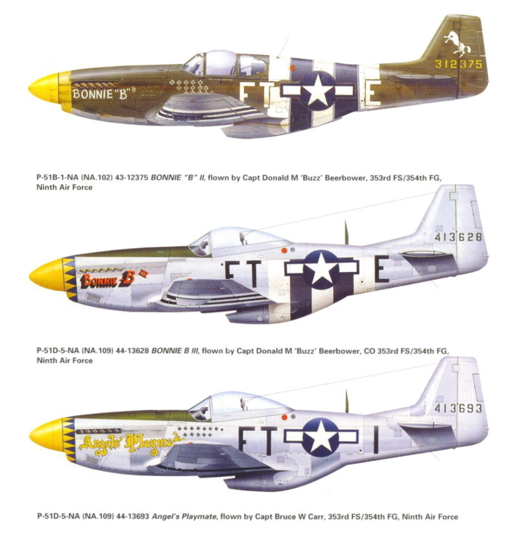 NORTH AMERICAN P-51 MUSTANG P-51-f10