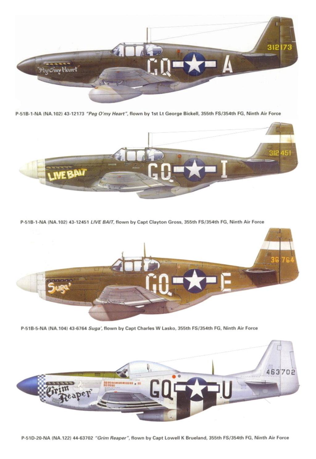 NORTH AMERICAN P-51 MUSTANG P-51-g10