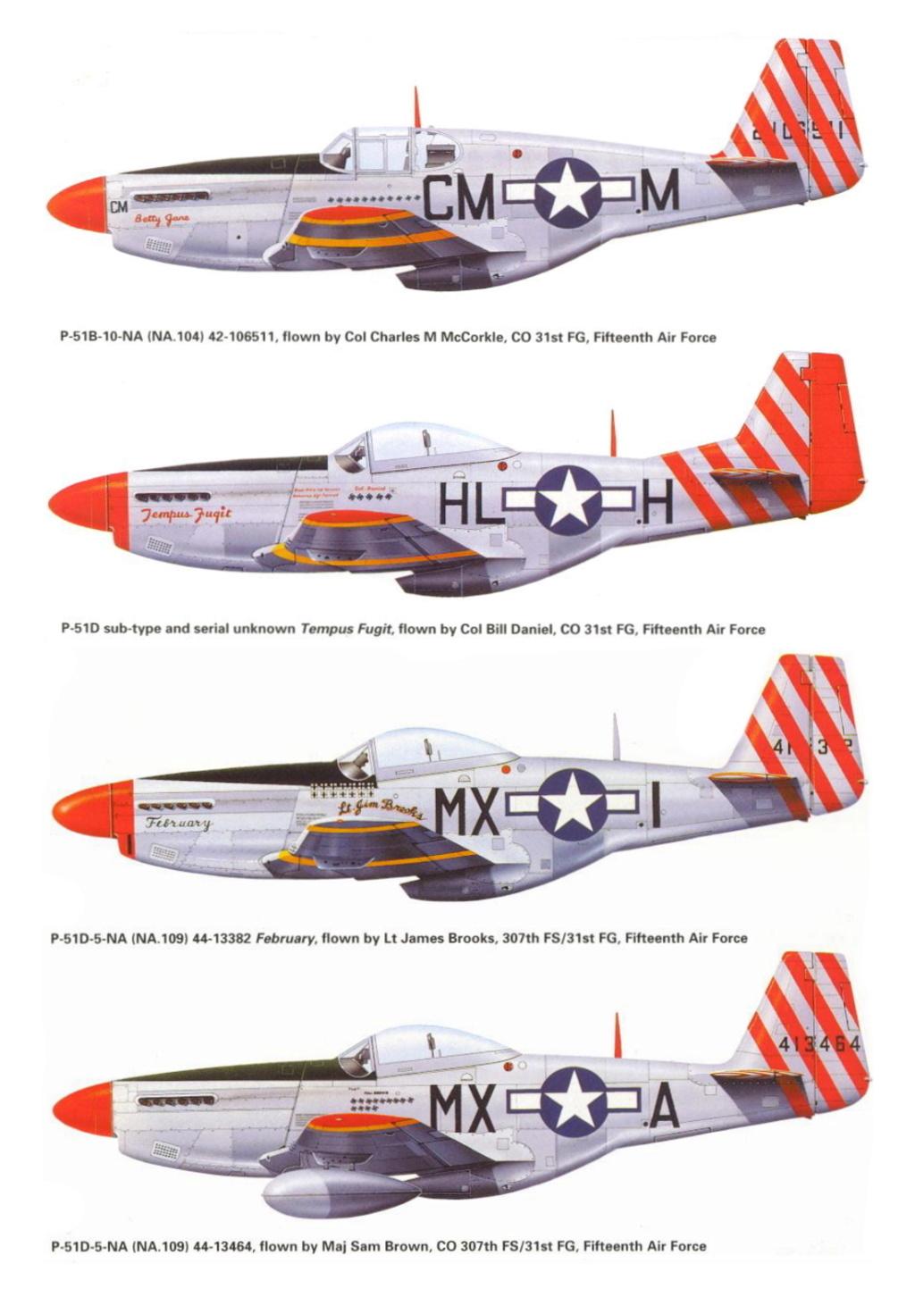 NORTH AMERICAN P-51 MUSTANG P-51-h10