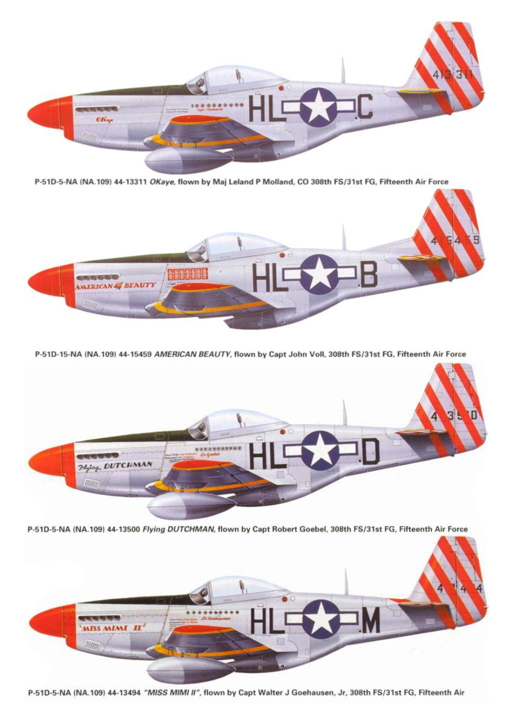 NORTH AMERICAN P-51 MUSTANG P-51-h11