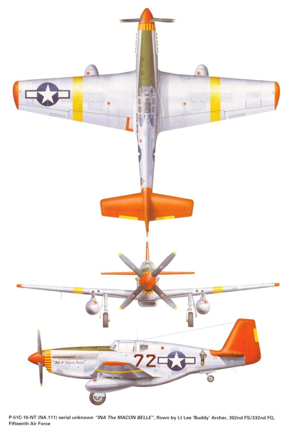 NORTH AMERICAN P-51 MUSTANG P-51-r10