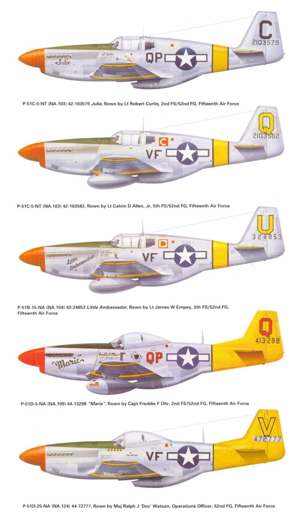 NORTH AMERICAN P-51 MUSTANG P-51-y10