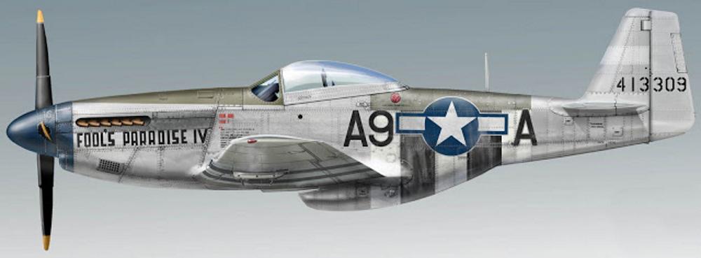 NORTH AMERICAN P-51 MUSTANG P-51_d10