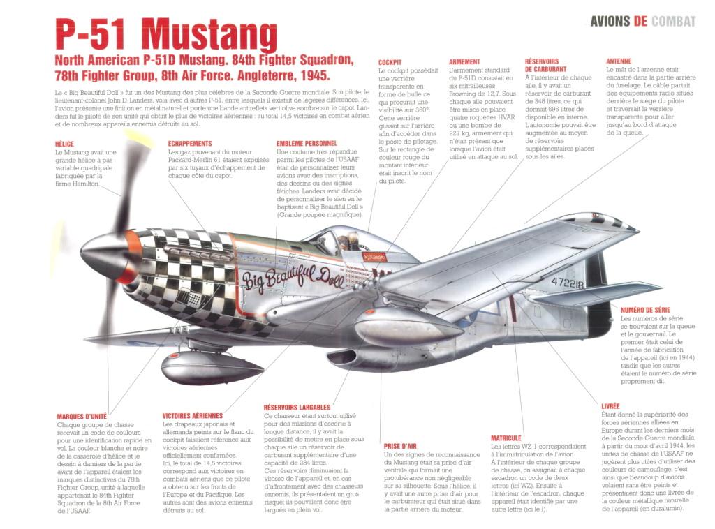 NORTH AMERICAN P-51 MUSTANG P-51_m10