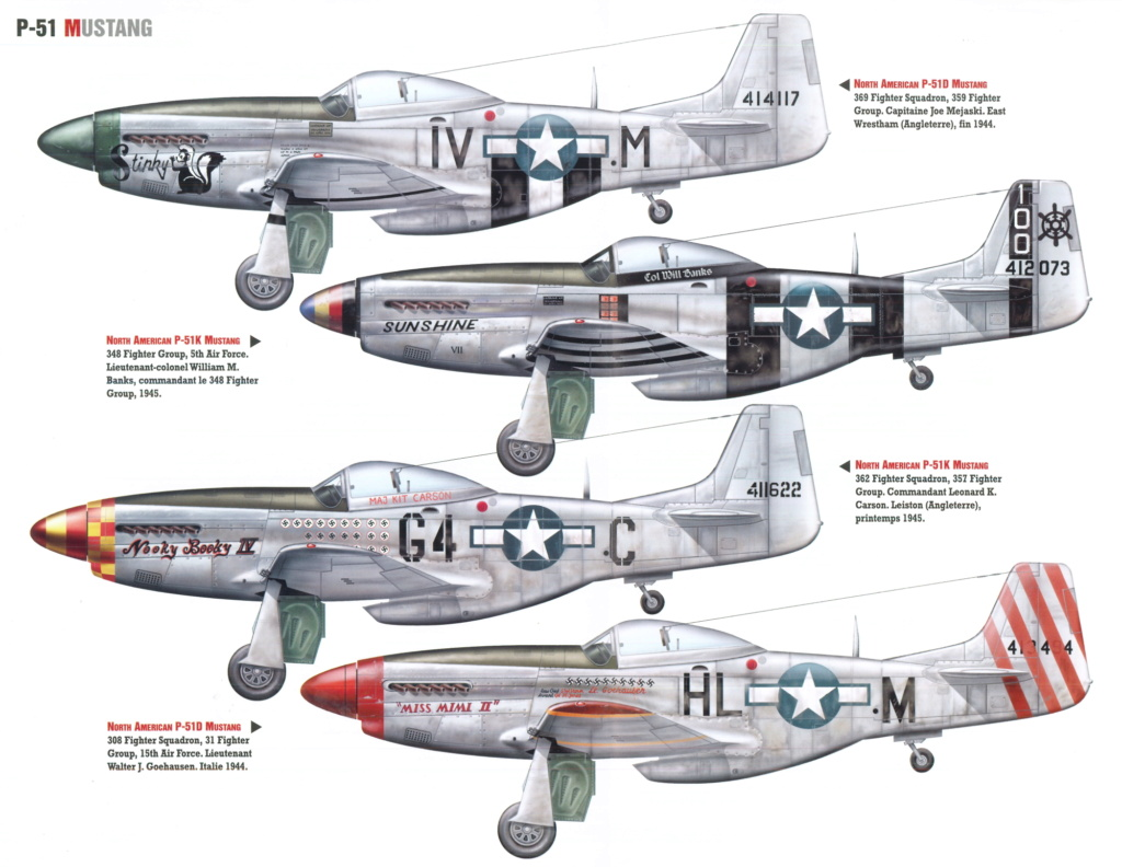 NORTH AMERICAN P-51 MUSTANG P-51_m11