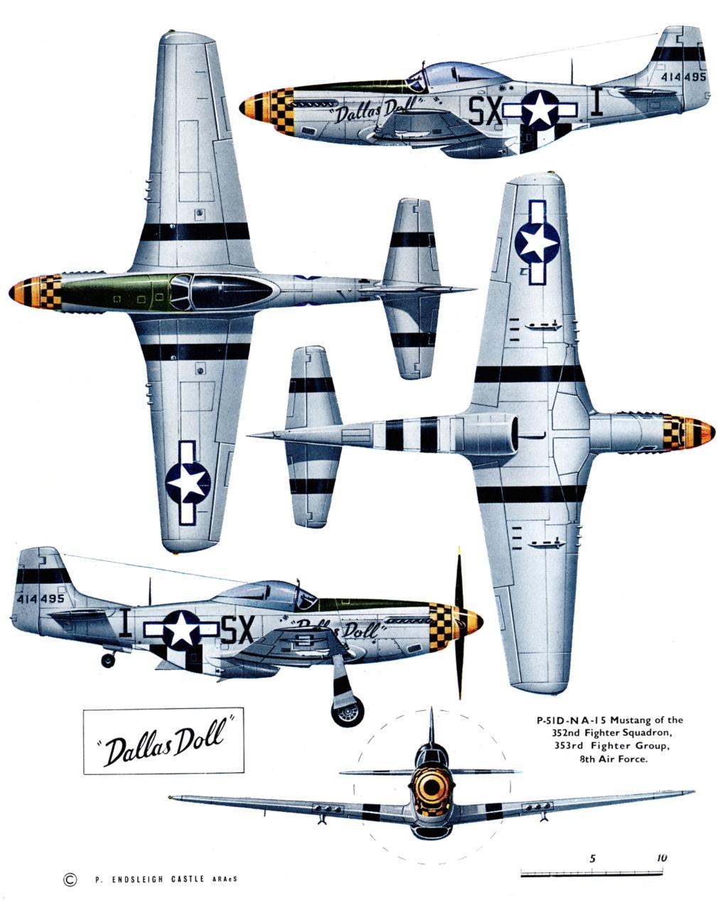 NORTH AMERICAN P-51 MUSTANG P-51d-10
