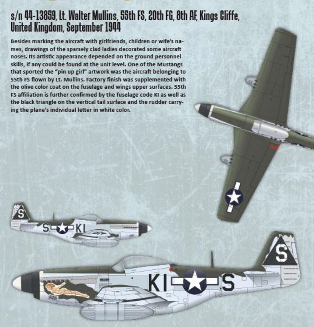 NORTH AMERICAN P-51 MUSTANG P51-1-13