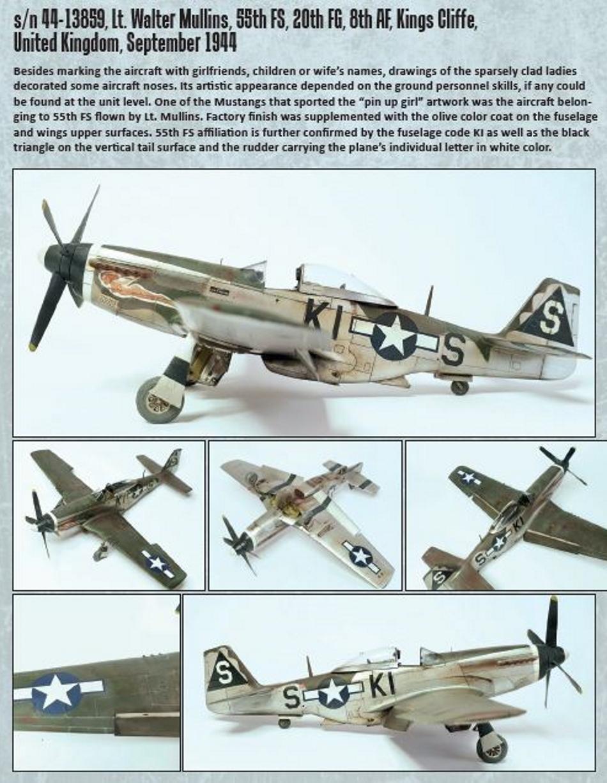 NORTH AMERICAN P-51 MUSTANG P51-1-17