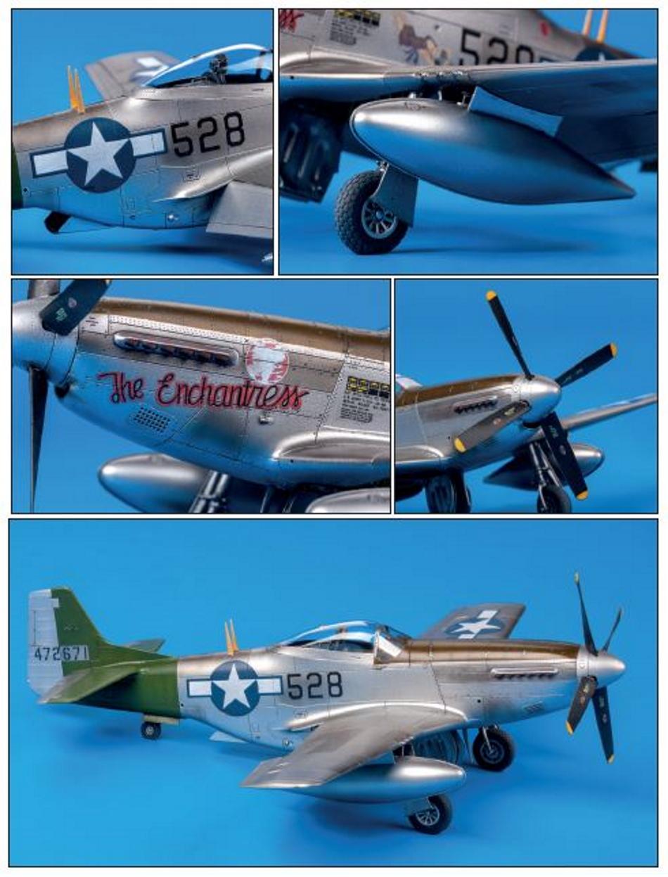 NORTH AMERICAN P-51 MUSTANG P51-2-28