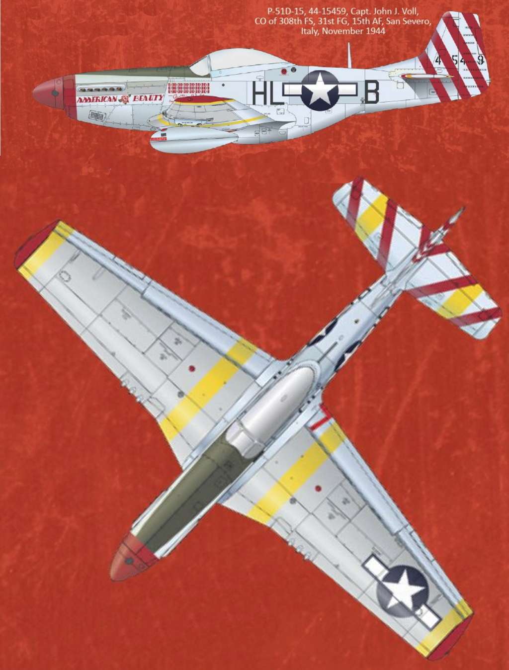 NORTH AMERICAN P-51 MUSTANG P51-5-13