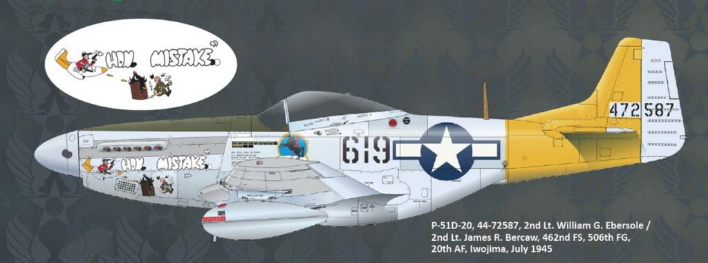 NORTH AMERICAN P-51 MUSTANG P51-6-10