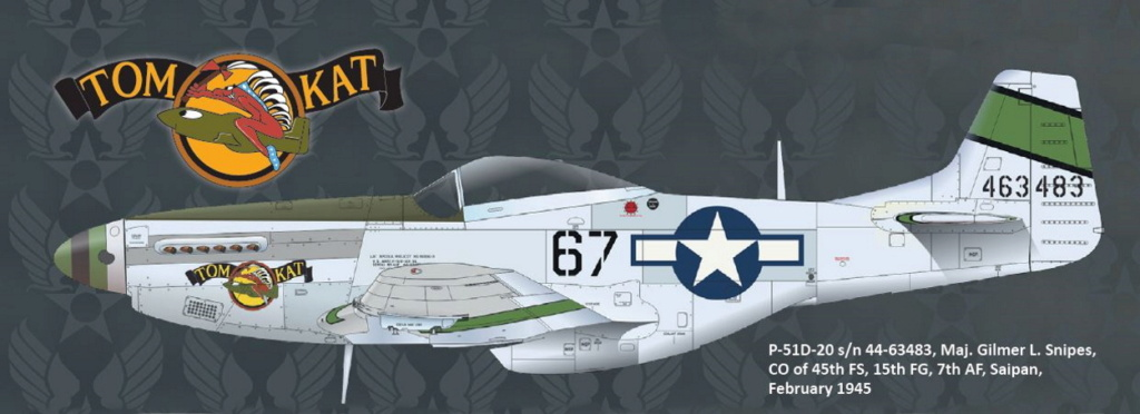 NORTH AMERICAN P-51 MUSTANG P51-6-14