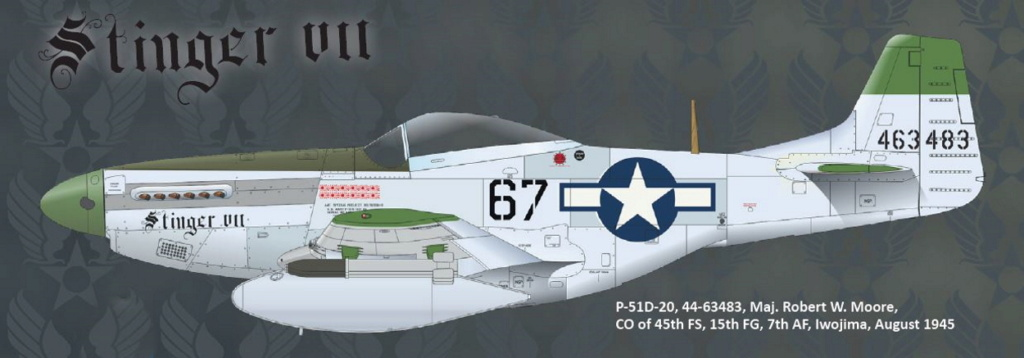 NORTH AMERICAN P-51 MUSTANG P51-6-15