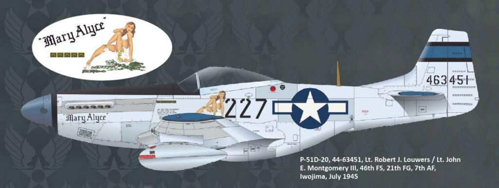 NORTH AMERICAN P-51 MUSTANG P51-6-17