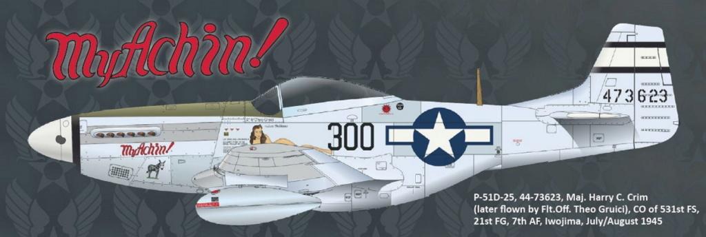 NORTH AMERICAN P-51 MUSTANG P51-6-18