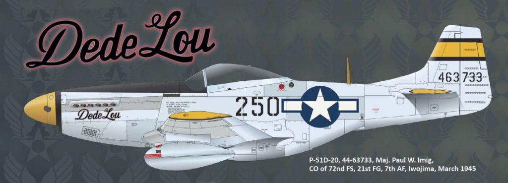 NORTH AMERICAN P-51 MUSTANG P51-6-19