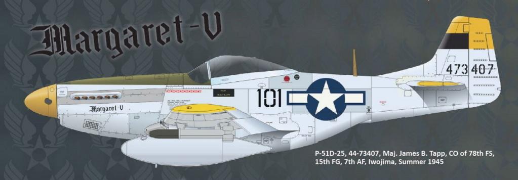 NORTH AMERICAN P-51 MUSTANG P51-6-21