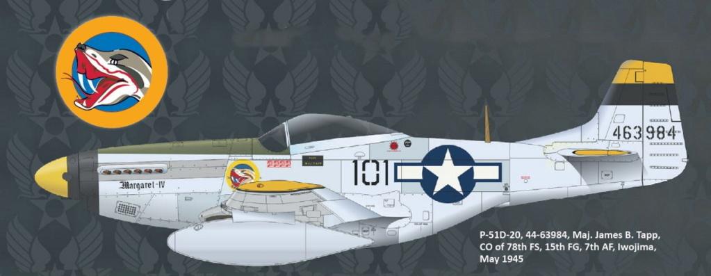 NORTH AMERICAN P-51 MUSTANG P51-6-22