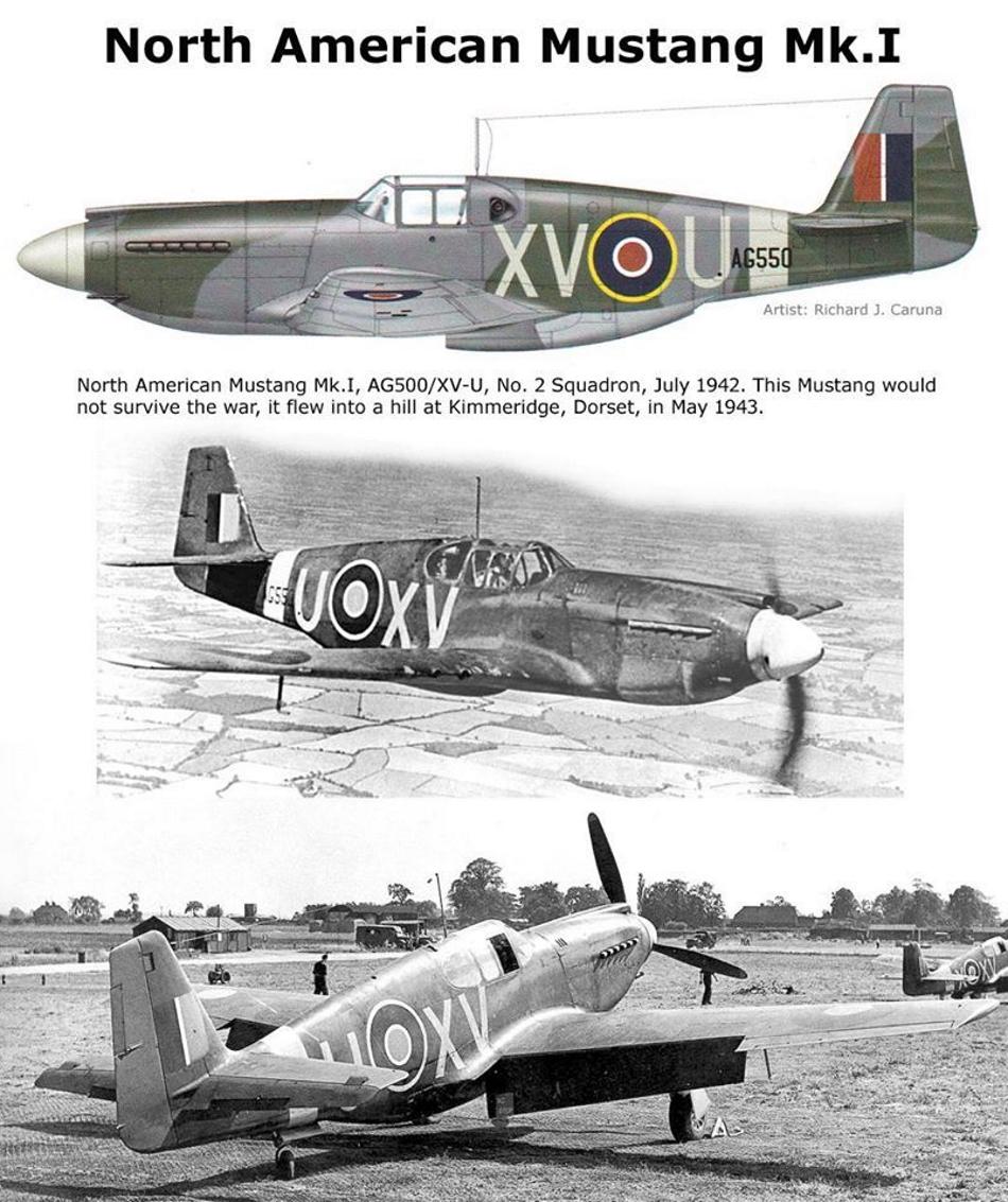 NORTH AMERICAN P-51 MUSTANG P51b_g12