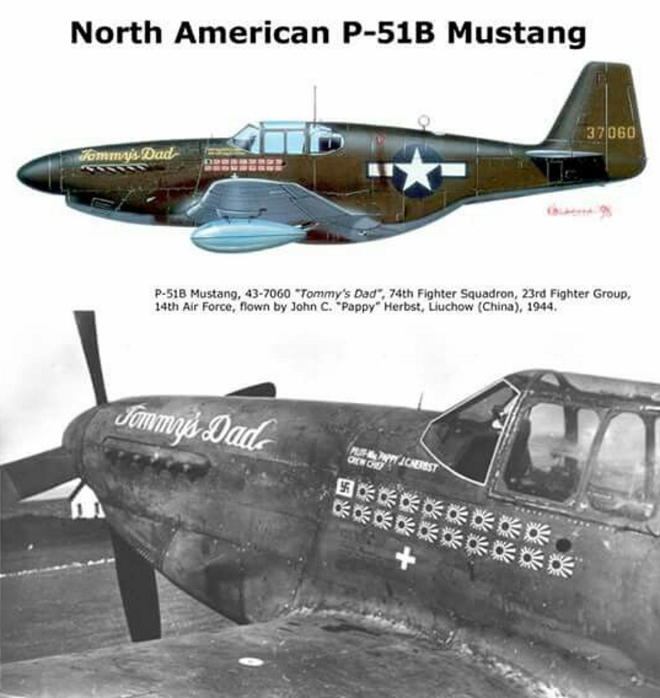 NORTH AMERICAN P-51 MUSTANG P51b_u10