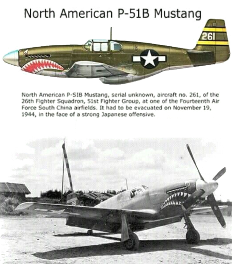 NORTH AMERICAN P-51 MUSTANG P51b_u12