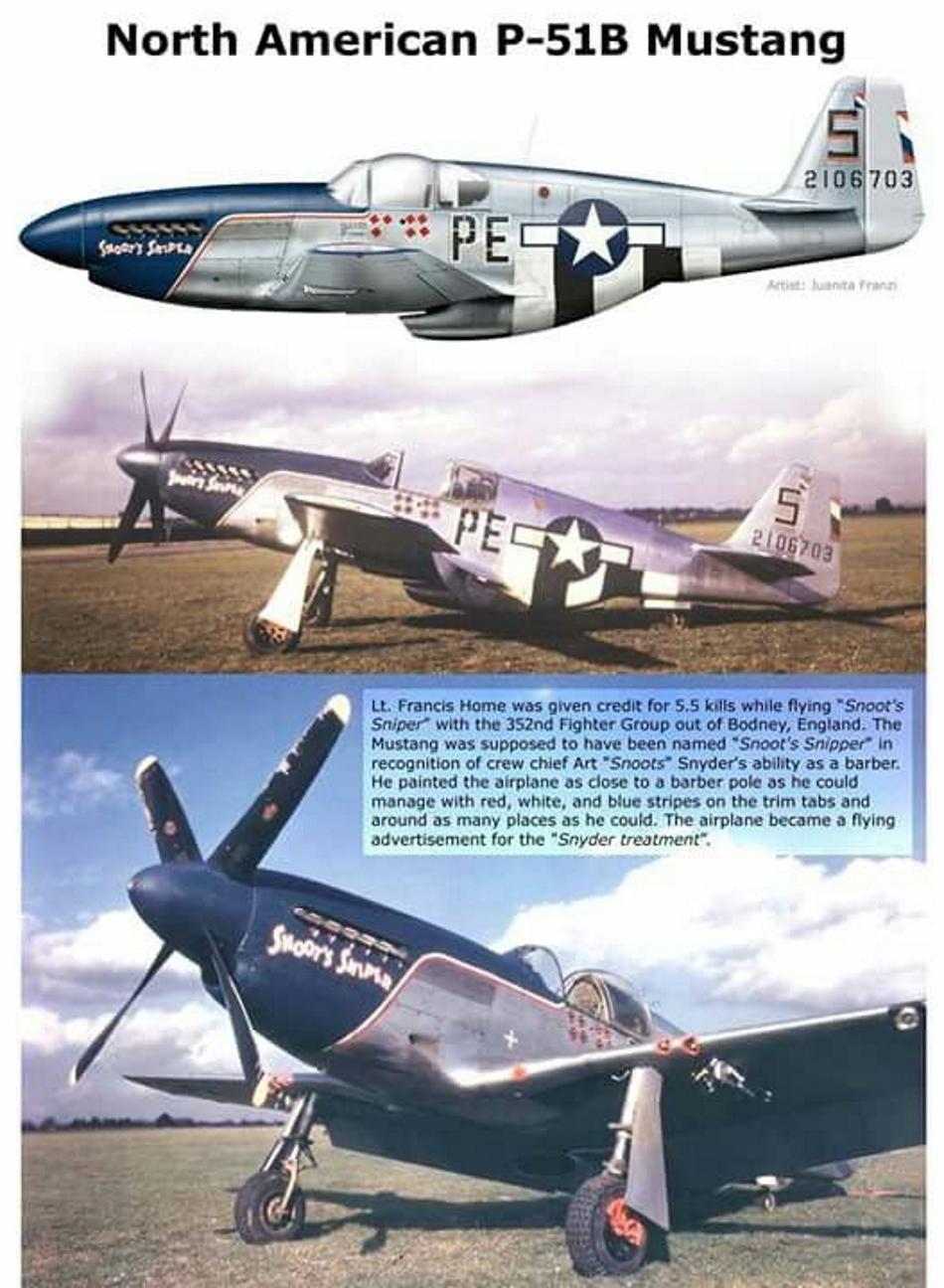 NORTH AMERICAN P-51 MUSTANG P51b_u19