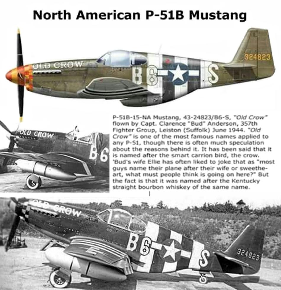 NORTH AMERICAN P-51 MUSTANG P51b_u20