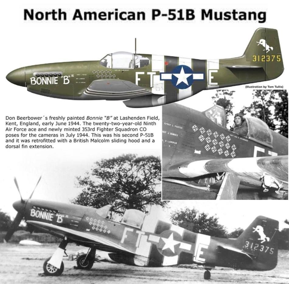 NORTH AMERICAN P-51 MUSTANG P51b_u24