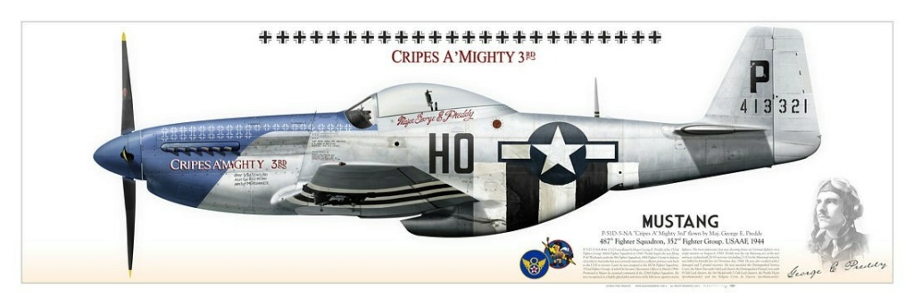"""From Spitfire, Me Bf 109 E, FW190 A, F4U Corsair, P-51 """"Blood Red Skies"""" to Wings Of Glory P51d-110"""