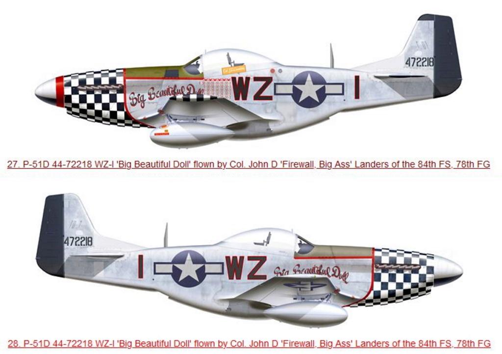 NORTH AMERICAN P-51 MUSTANG P51d-113