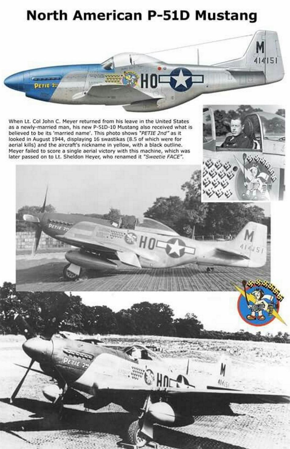 NORTH AMERICAN P-51 MUSTANG P51d-117