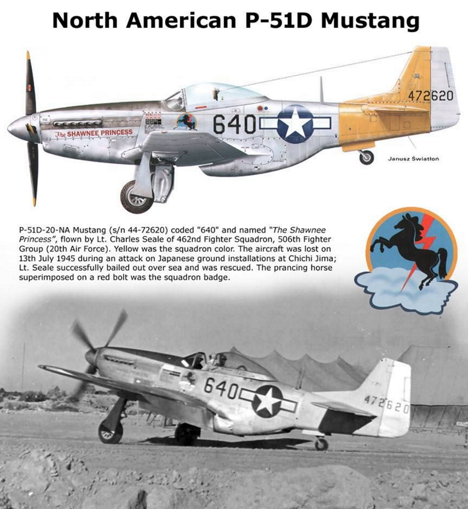 NORTH AMERICAN P-51 MUSTANG P51d-124