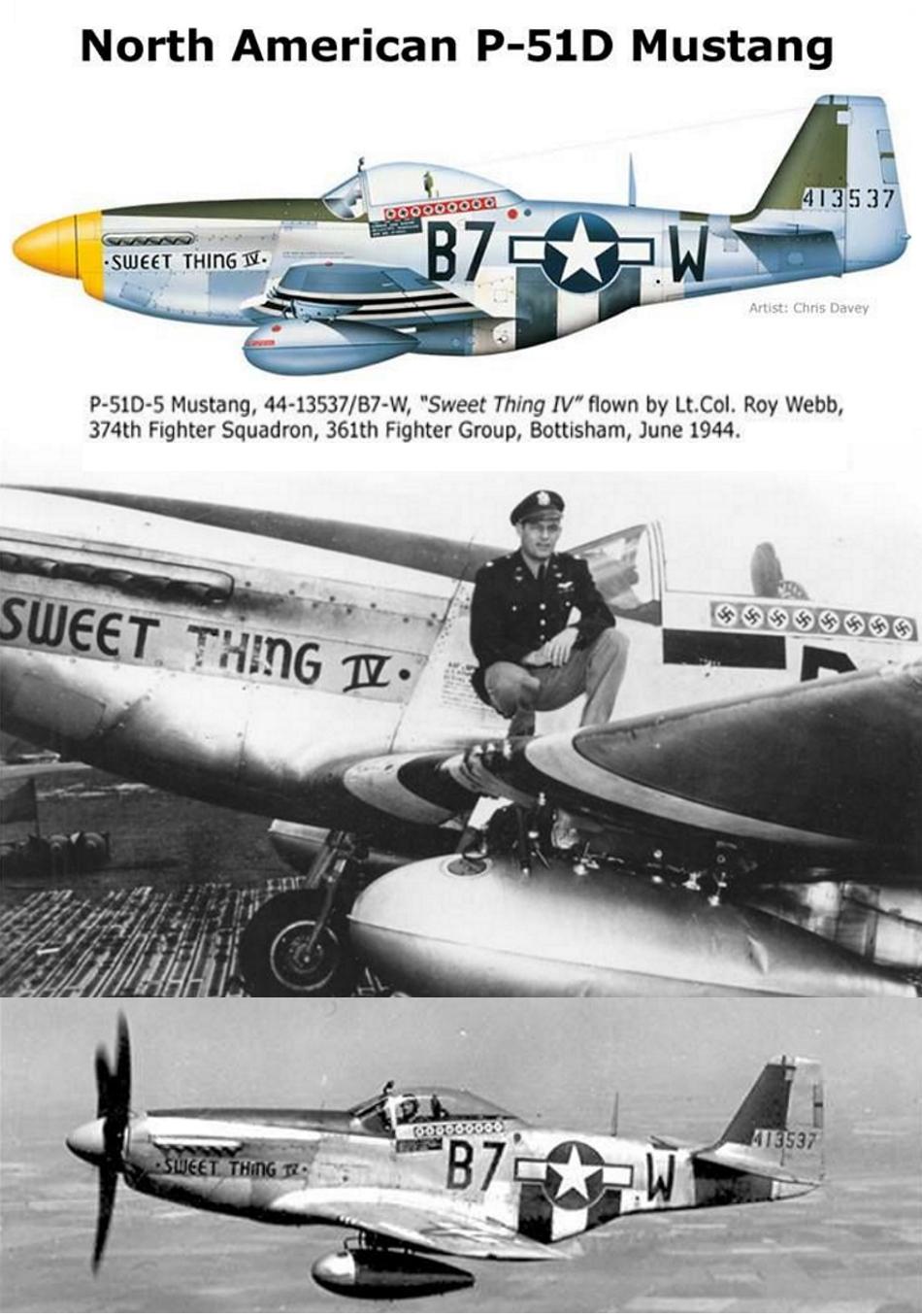 NORTH AMERICAN P-51 MUSTANG P51d-218