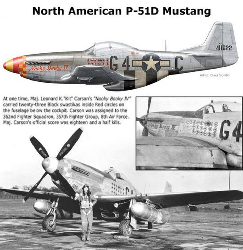 NORTH AMERICAN P-51 MUSTANG P51d-219