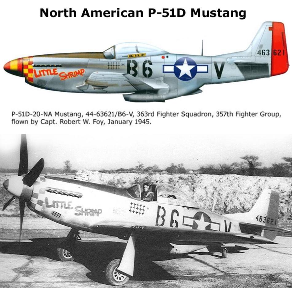 NORTH AMERICAN P-51 MUSTANG P51d-220