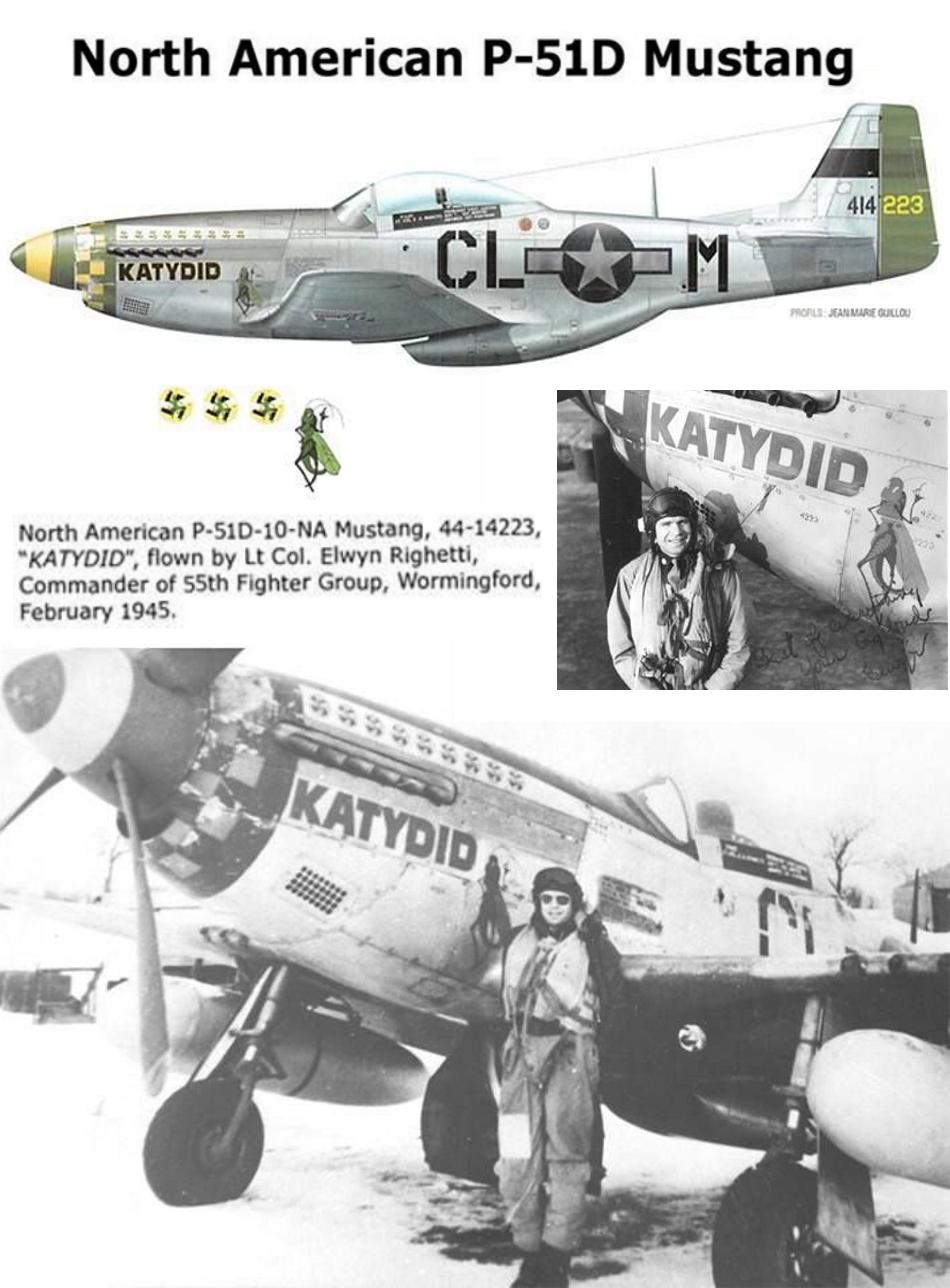 NORTH AMERICAN P-51 MUSTANG P51d-222