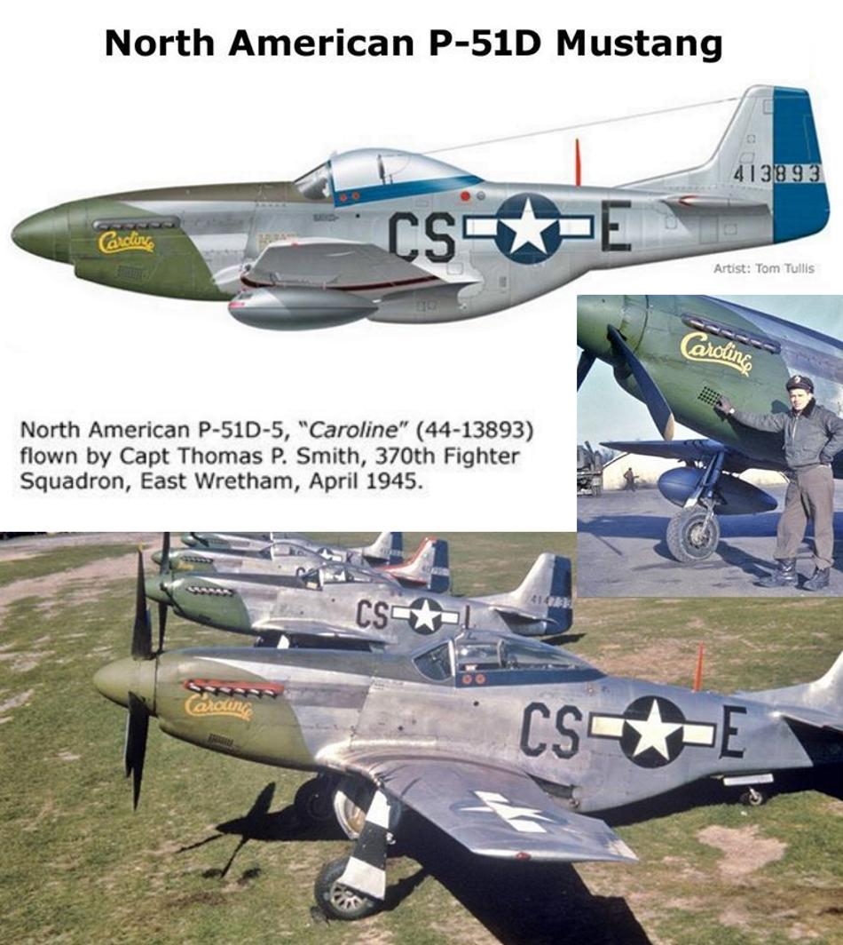 NORTH AMERICAN P-51 MUSTANG P51d-310
