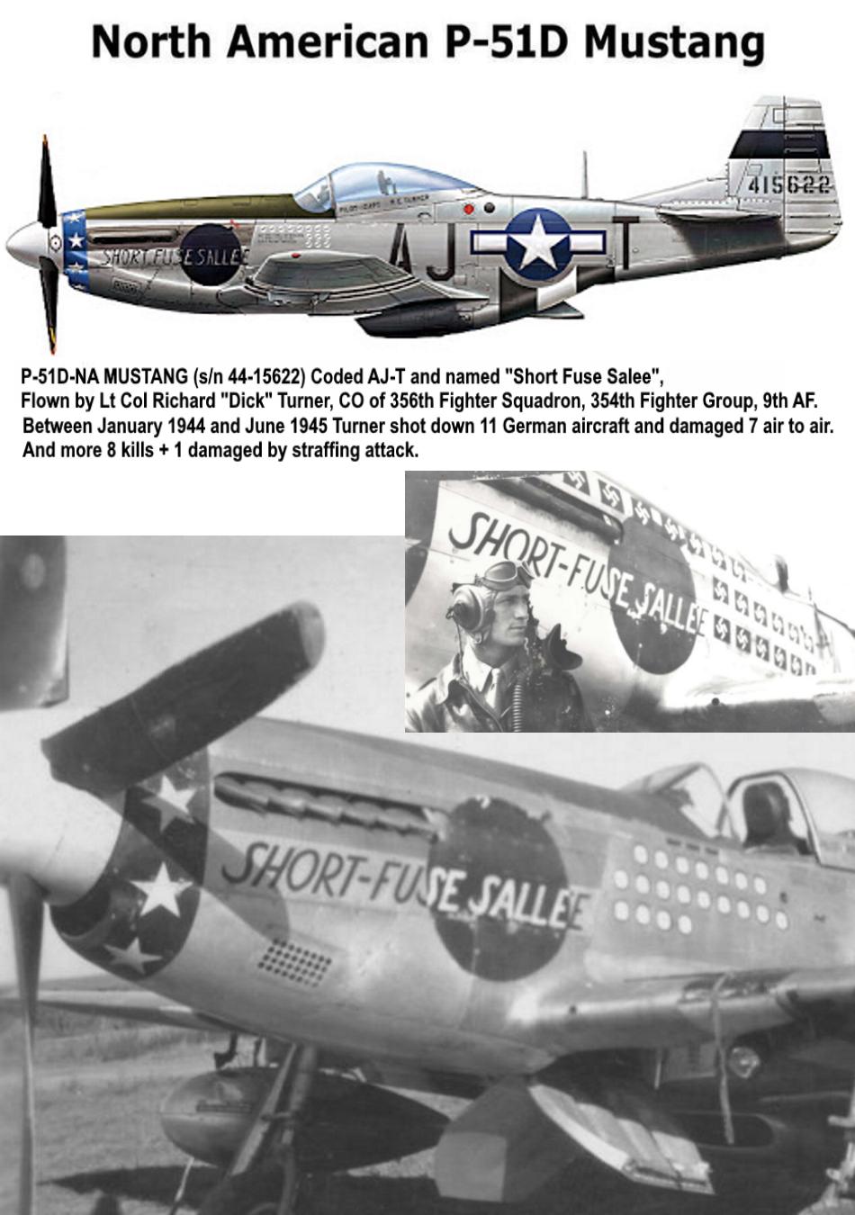 NORTH AMERICAN P-51 MUSTANG P51d-318