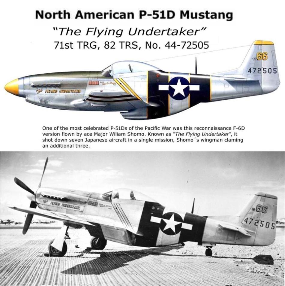 NORTH AMERICAN P-51 MUSTANG P51d-810