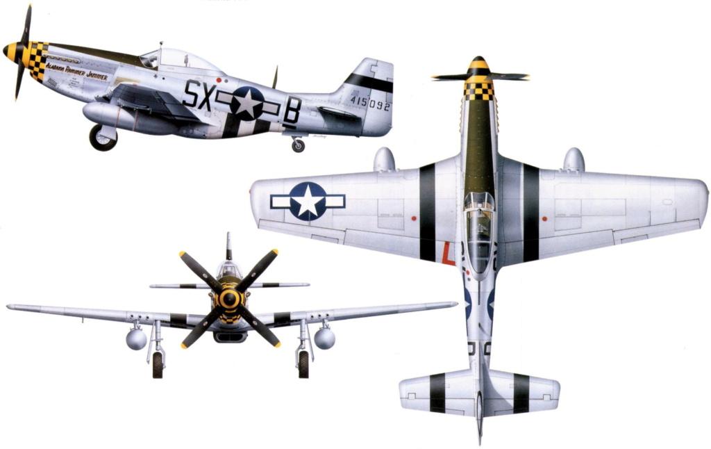 NORTH AMERICAN P-51 MUSTANG P51d_u14