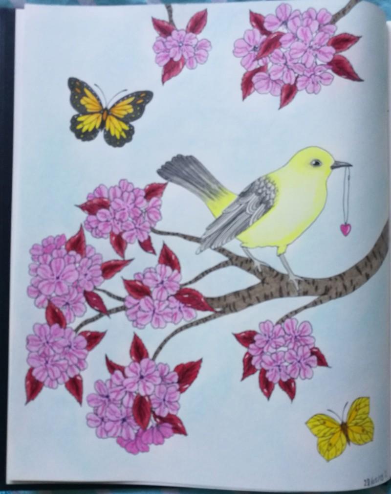 Les défis personnels de Chatbleu - Entamer chaque livre de coloriage - Page 3 20190521