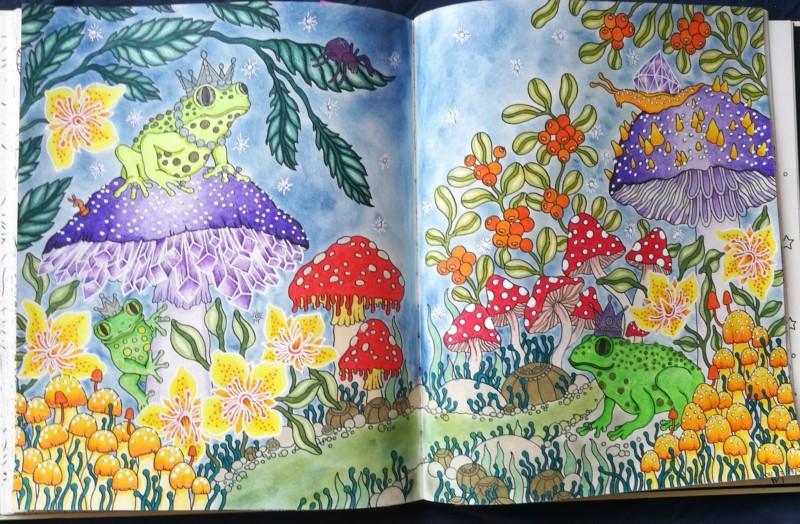 Les défis personnels de Chatbleu - Entamer chaque livre de coloriage - Page 4 20190711