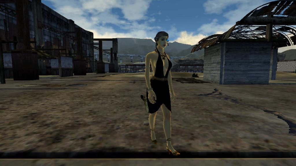 Fallout Screenshots XIII - Page 45 Barten10