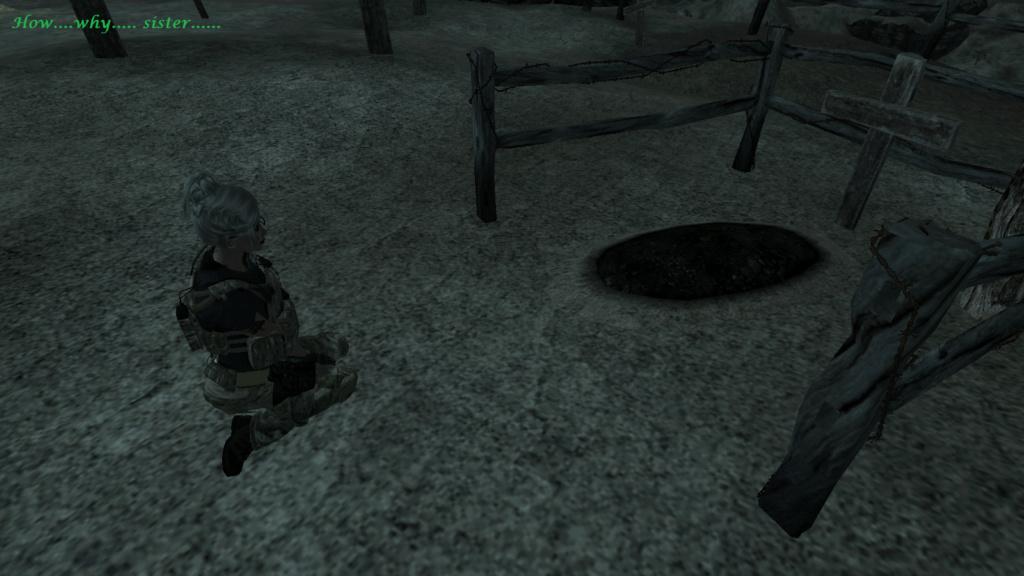 Fallout Screenshots XIV - Page 6 Scree313
